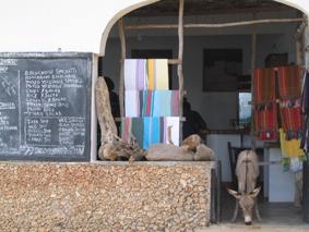 Un burro en el restaurante Stop Over. Lamu, Kenya. Septiembre de 2006