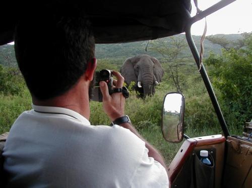 El dr. Llodio filmando a un elefante en Mara. Masai Mara, Kenya, marzo de 2002