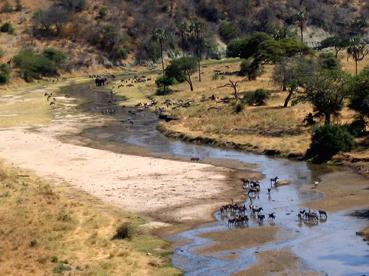 R�o Tarangire, Tanzania. Agosto de2004