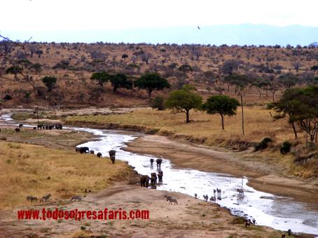 Vista de Tarangire. Tanzania, septiembre de 2007