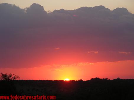 Atardecer en Serengeti. Tanzania. Agosto de2007