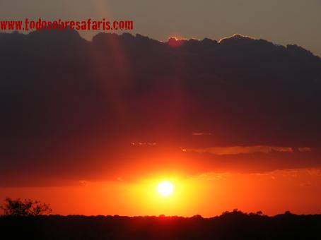 Atardecer en Serengeti. Agosto de2007